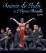 Soiree de Gala 2008, Paris SD (DVD)